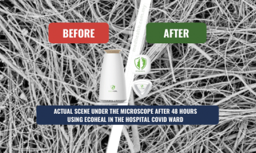 Ecoheal - Contribute to the Epidemic Prevention Malaysia